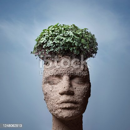 Woman face with dry cracked earth and plants. Not oversized, digital composite from more images!