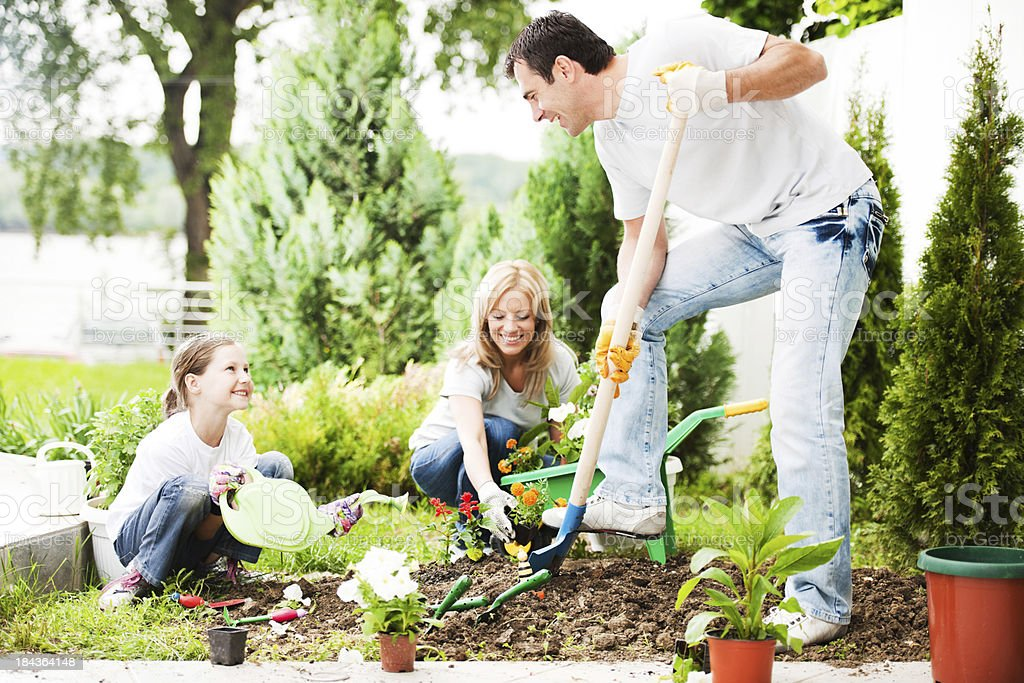 Mother, father and their daughter gardening. royalty-free stock photo
