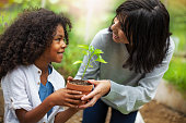istock Mother giving son potted plant at backyard garden 1221266182