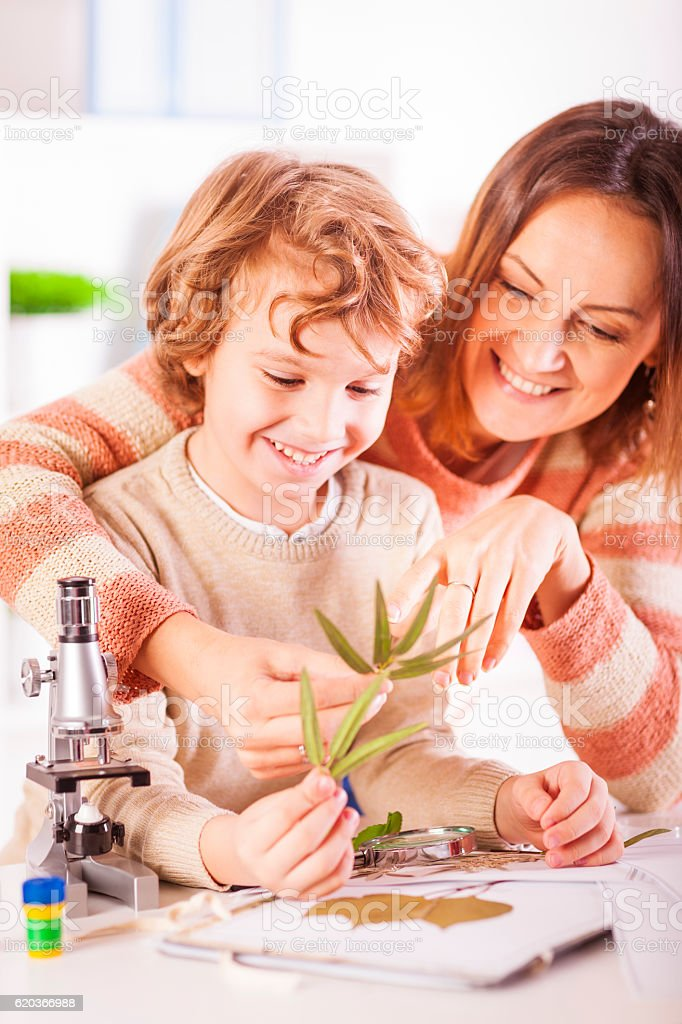 Mother helping her son with his science project foto de stock royalty-free