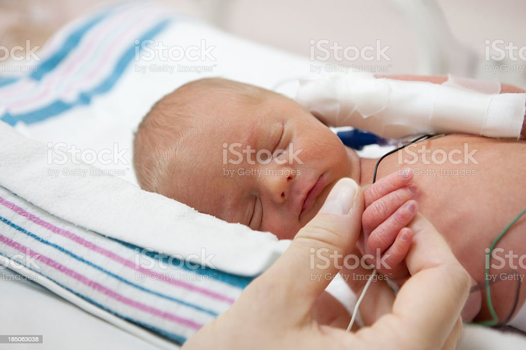 mother holdind hand of a premature baby in incubator royalty-free stock photo