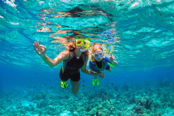 Mother, kid in snorkeling mask dive underwater with tropical fishes Happy family - mother, kid in snorkeling mask dive underwater with tropical fishes in coral reef sea pool. Show by hands divers sign OK. Travel lifestyle, beach adventure on summer holiday with child. underwater diving stock pictures, royalty-free photos & images