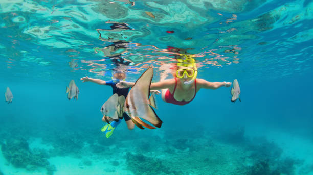 Mother, kid in snorkeling mask dive underwater with tropical fishes Happy family - mother, kid in snorkeling mask dive underwater, explore tropical fishes Platax ( Batfish). Travel lifestyle, beach adventure, swimming activity on summer with child. Focus on fishes underwater diving stock pictures, royalty-free photos & images