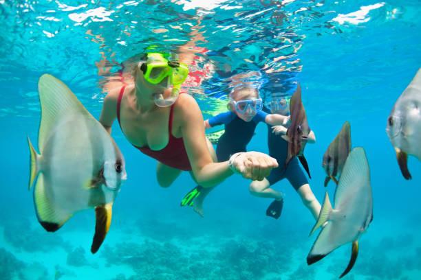 어머니, 열대 어류와 함께 스노클링 마스크 다이빙을하는 아이 - 스노클 뉴스 사진 이미지