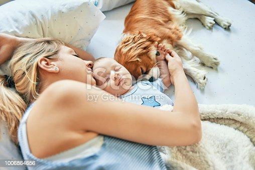 peacefully napping at home