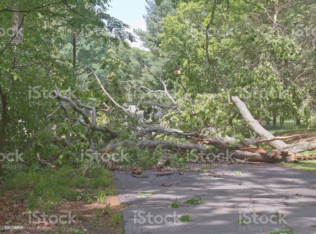 Mother Natures Detour stock photo