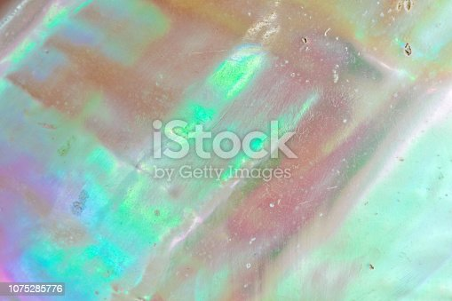 istock Mother of pearl sea shell close up background 1075285776