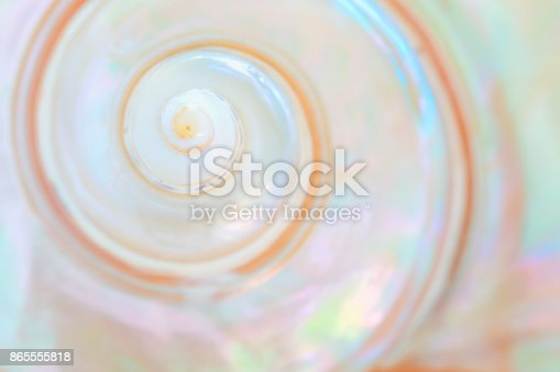 istock Mother of pearl sea shell close up background 865555818