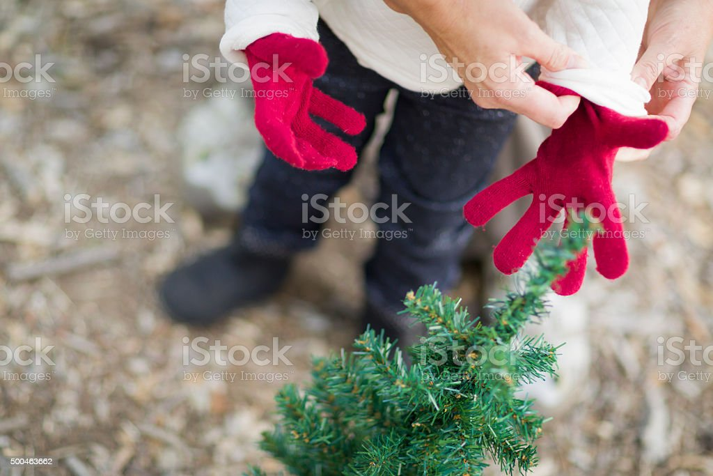 Mother Putting Red Mittens On A Childs Hands stock photo