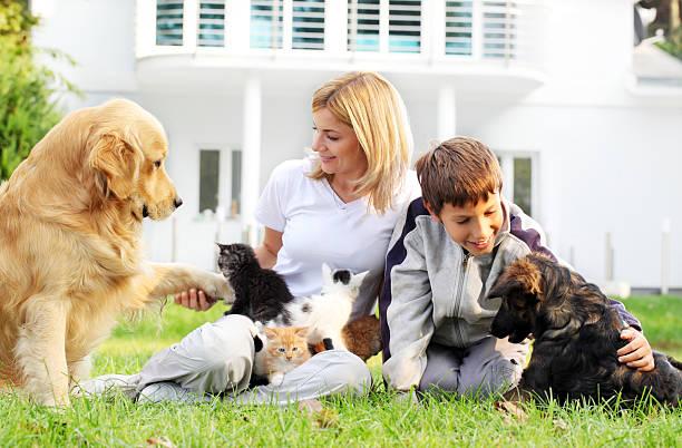 Mother son and pets picture id154904591?b=1&k=6&m=154904591&s=612x612&w=0&h=prj956svikqb943r7dil3o2gh mb0 ld8vad4cy9eko=