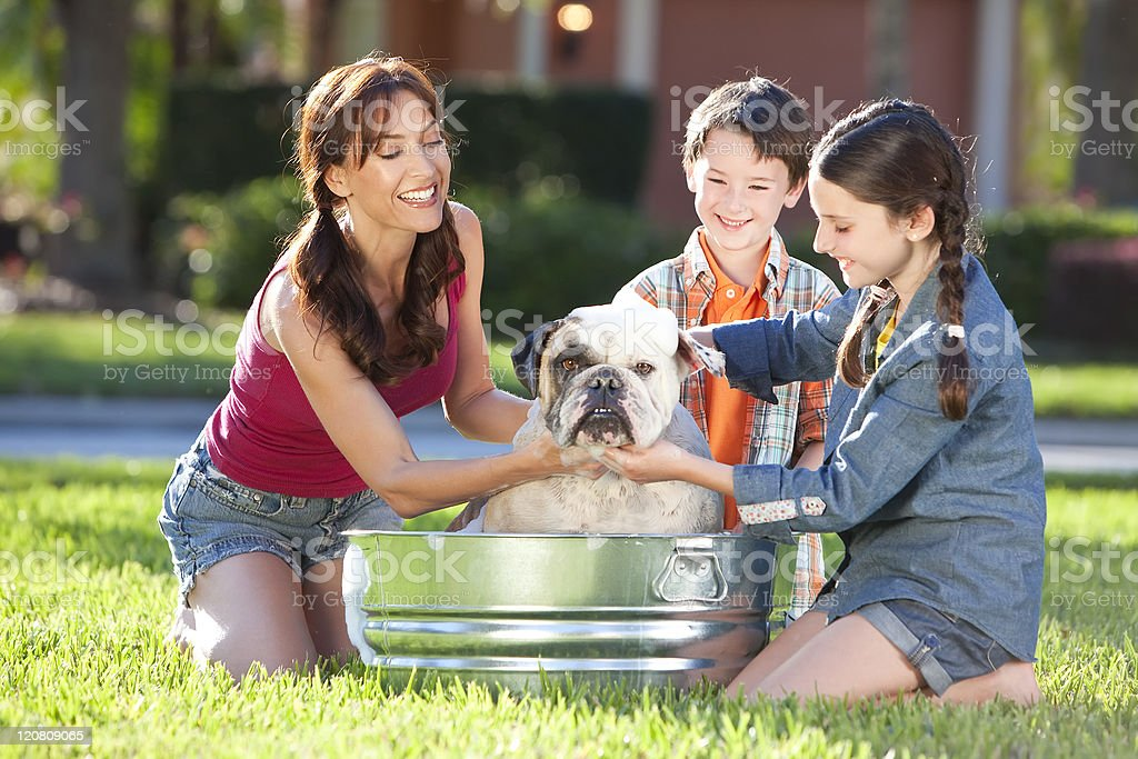 Mother Son & Daughter Family Washing Pet Dog In A Tub stock photo