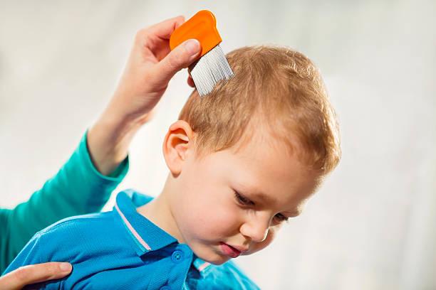 mutter, die einen kamm zu look für kopf lice. - entfernen von tierhaaren stock-fotos und bilder