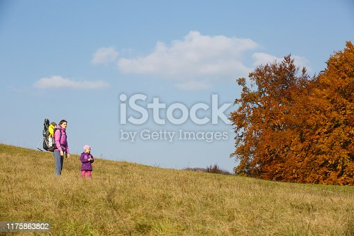 istock Mother with children hiking on a nice autumn day carrying kid 1175863802