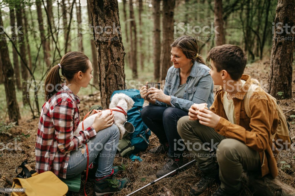 Mother with children relaxing at forest - Zbiór zdjęć royalty-free (Chłopcy)