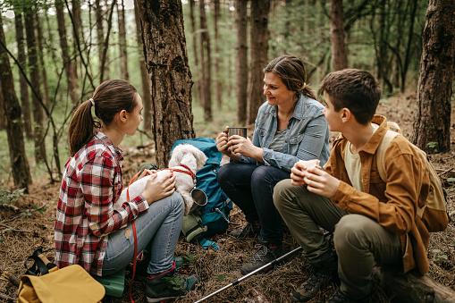 Photo libre de droit de Mère Avec Des Enfants Détendant À La Forêt banque d'images et plus d'images libres de droit de Activité de loisirs