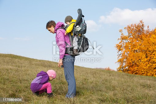 istock Mother with children searching for wild flowers 1175864434