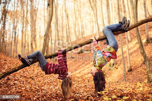 Mom and daughter having fun in autumn forest.They hanging upside down holding with the hands and legs to a large branch of a tree and watch each other. They are very happy. Beautiful nature around them is covered with yellow autumn leaves. Child and mother are wearing colorful handmade sweaters.