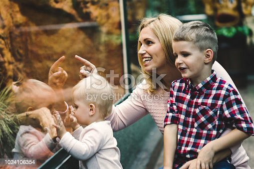 istock Mother with her sons looking at turtle in zoo 1024106354