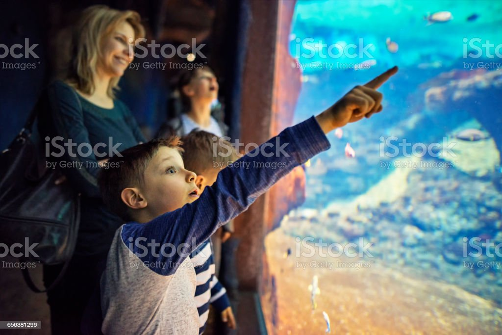 Mother with kids visiting a huge aquarium – zdjęcie