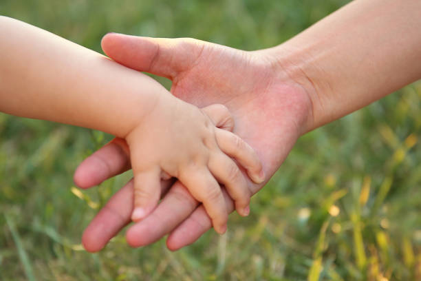 Mother's and a baby hands stock photo