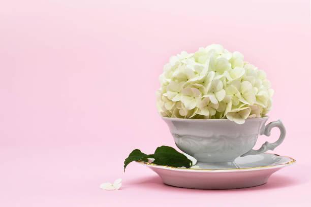 Muttertag Hintergrund mit Kopierplatz. Schneeblüte in Vintage-Tee-Tasse – Foto
