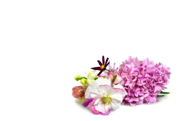 Fond de jour de mères avec fleurs isolé sur blanc - Photo