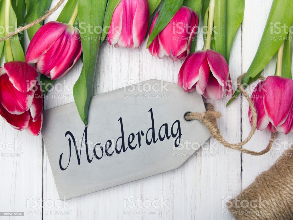 Mother's day card  with Dutch words: Mother's day. Tulip bouquet on white wooden background, copy space royalty-free stock photo