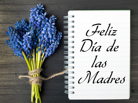 Mother's day card with Spanish worsd: Happy Mother's day, and  blue flowers frame on white wooden background