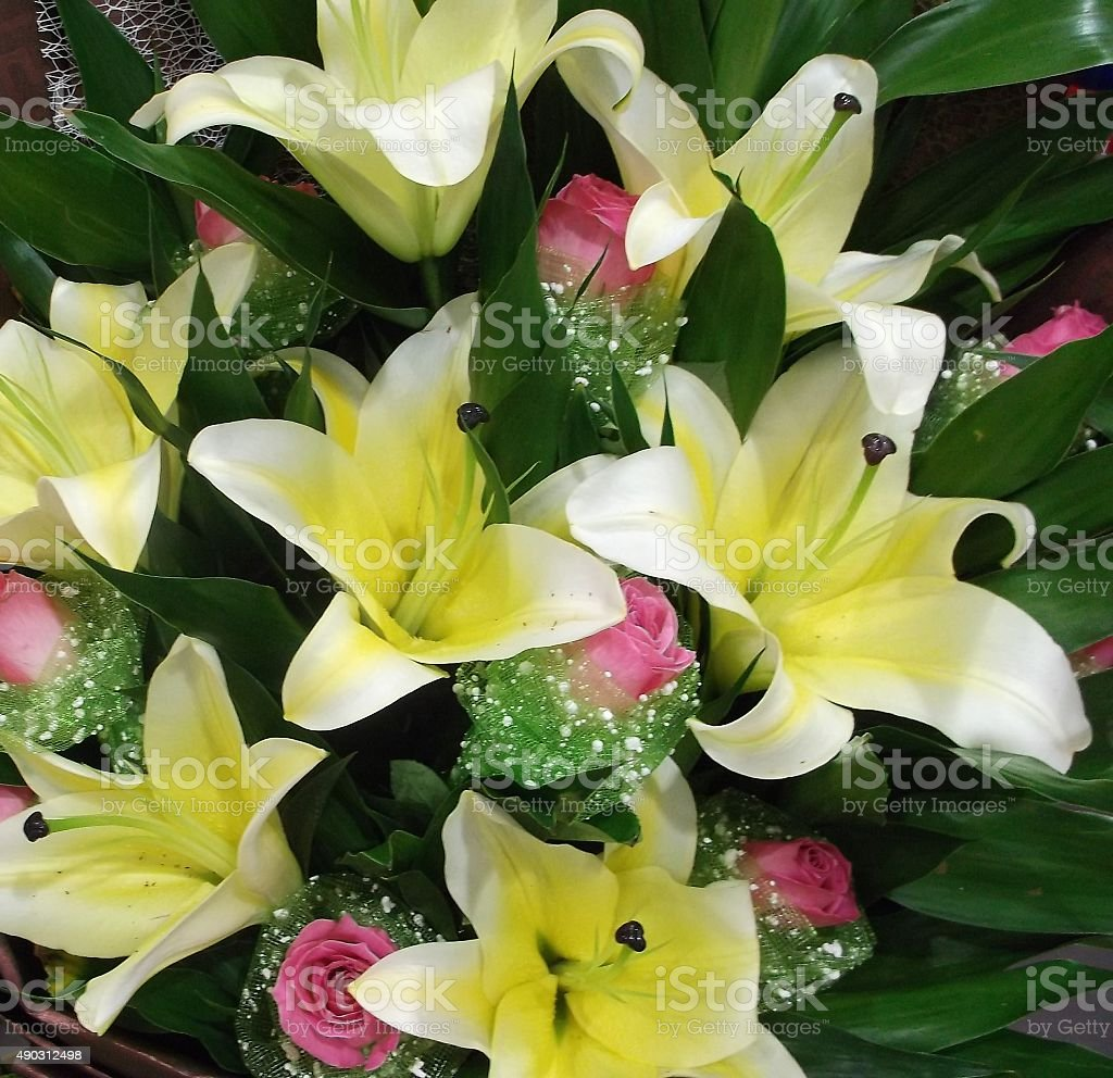 Mothers Day Flowers stock photo