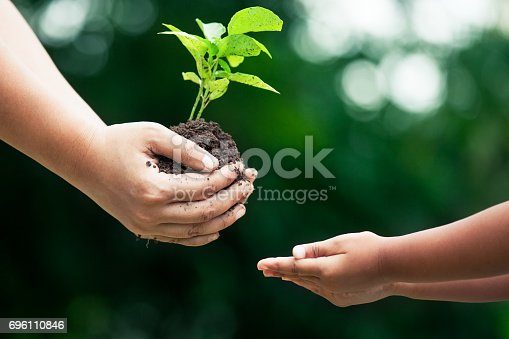 istock Mother's hand giving young tree to a child for planting together 696110846