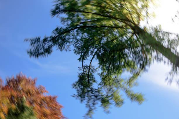bewegungsunschärfe himmel, der nach oben schaut - höhenangst stock-fotos und bilder