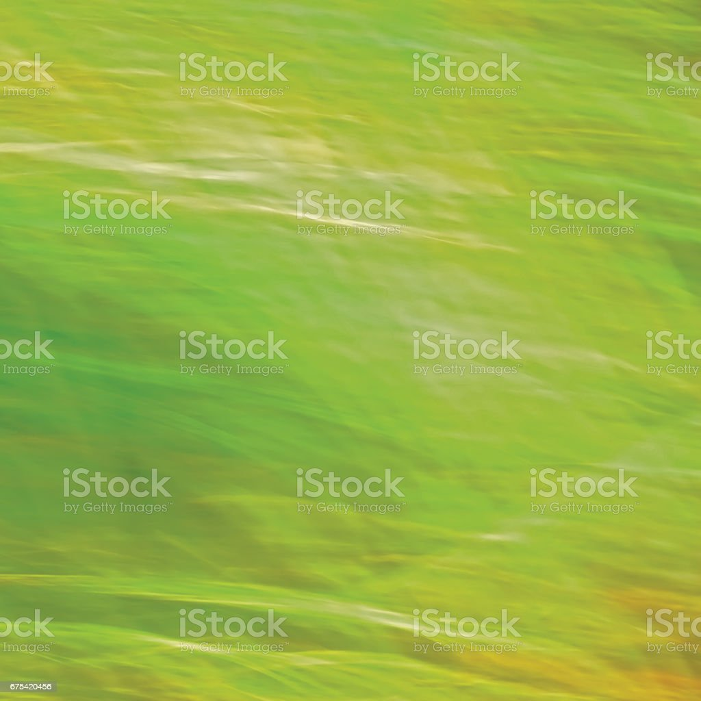 Motion Blurred Bright Meadow Grass Background, Abstract Green, Yellow, Amber Horizontal Texture Pattern Copy Space photo libre de droits