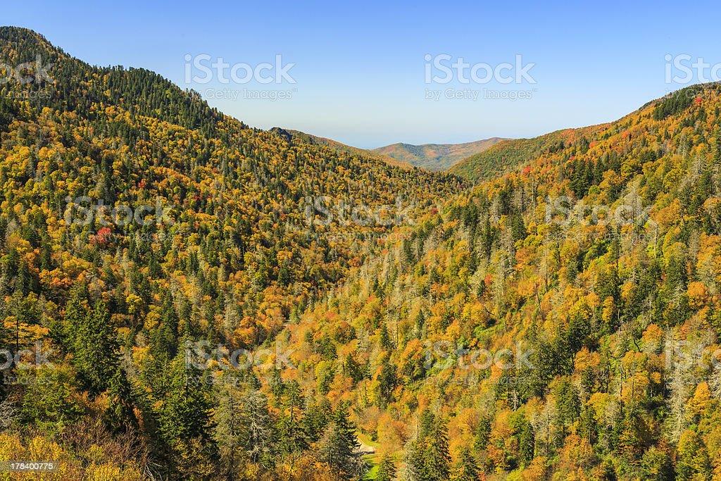 Moton Overlook in Autumn Color stock photo