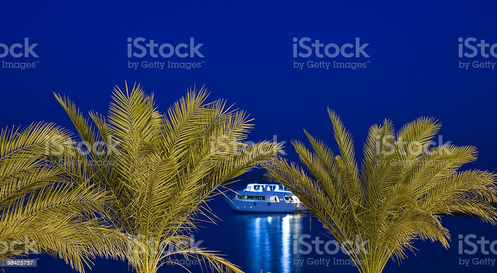 Motor boat framed by palm trees at night royalty-free stock photo