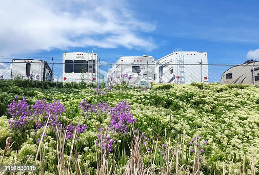 Vernon, British Columbia, Canada- May 24,2019: Row of different size and styles of motor homes. Behind fence with wild flowers in foreground.