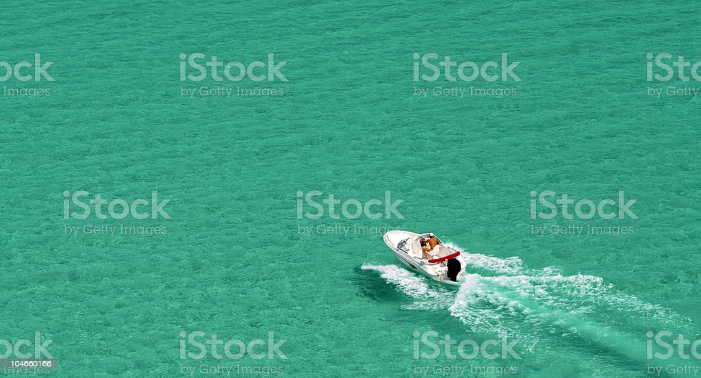 Motorboat Cruising. Speedboat. Sea. Green. royalty-free stock photo