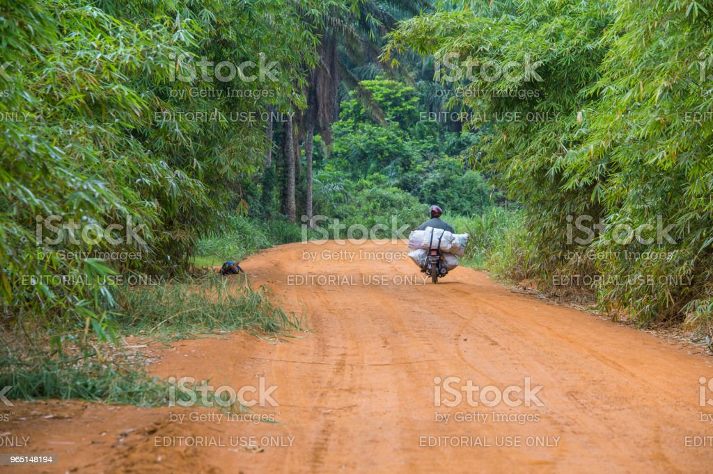 Motorcycle on an African highway in the jungle, Congo zbiór zdjęć royalty-free