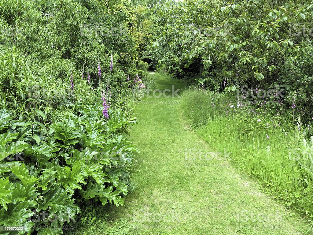 Mottistone Manor garden path royalty-free stock photo