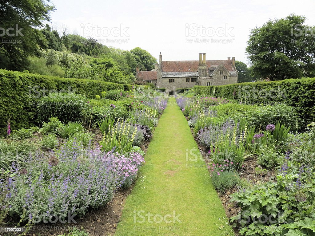 Mottistone Manor lavender beds royalty-free stock photo