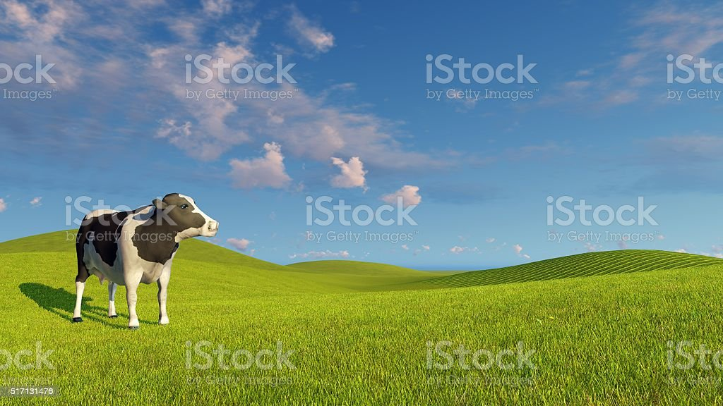 Mottled dairy cow on a green meadows stock photo