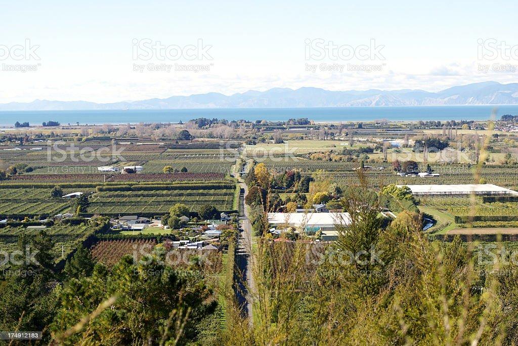 Motueka's Orchard Land, Tasman Region, NZ royalty-free stock photo