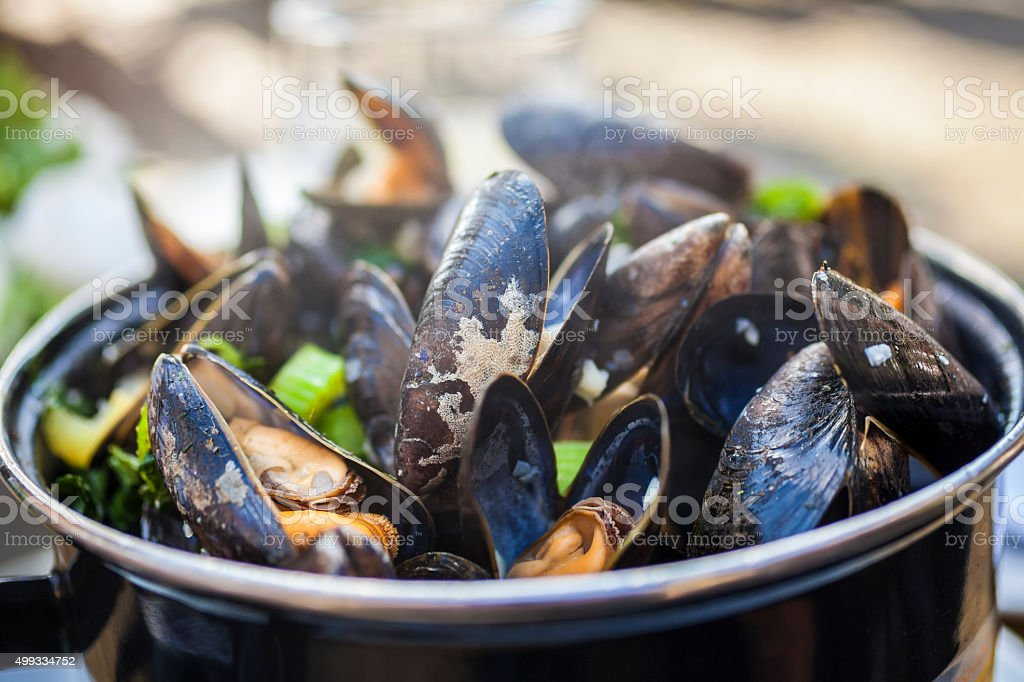 Moules Mariniere Mussels - Royalty-free 2015 Stockfoto