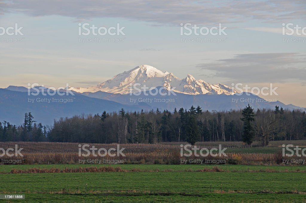 Mount Baker at sunset with wispy clouds stock photo