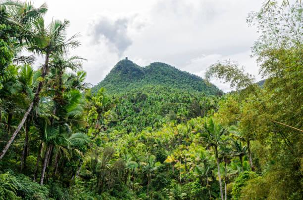 mount britton and el yunque landscape stock photo