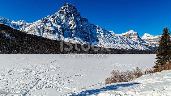 Snowcapped Mount Chephren and frozen Lake Waterfowl by the Icefield Parkway, Banff National Park, Canada