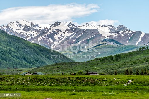 Mount Crested Butte near Gunnison, Colorado village in summer with green grass hill and snow mountains with alpine meadows in early summer