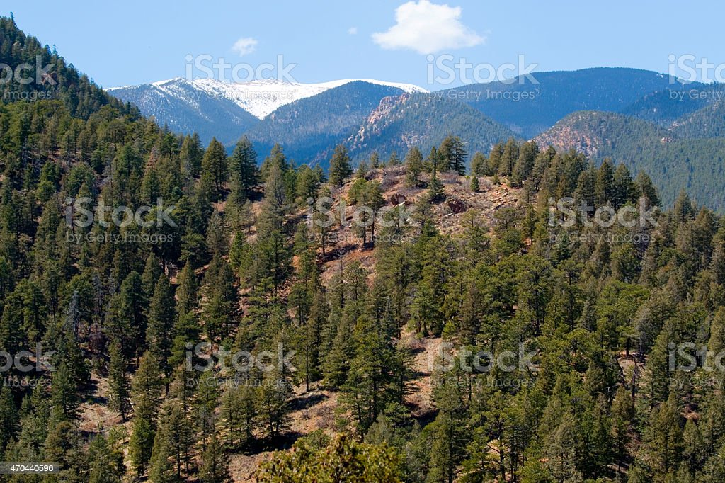 Mount cutler trail and pikes peak in cheyenne canyon stock photo mount cutler trail and pikes peak in cheyenne canyon royalty free stock photo publicscrutiny Images
