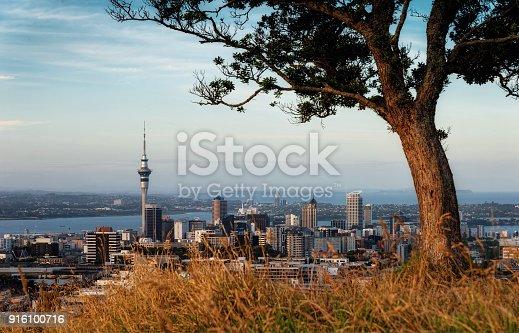 Mount Eden Auckland taken in 2015