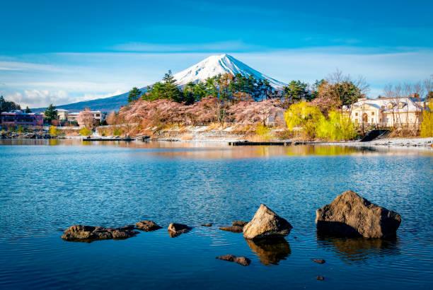 Mount fuji at Lake kawaguchiko with cherry blossom in Yamanashi near Tokyo, Japan Japan, Asia, Cherry Blossom, Mt. Fuji, April lake kawaguchi stock pictures, royalty-free photos & images