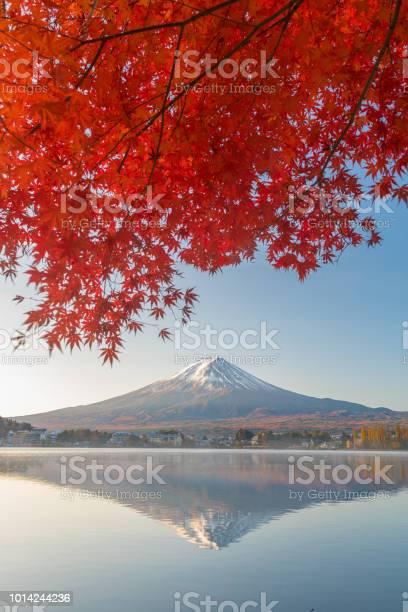 Photo of Mount Fuji in autumn season